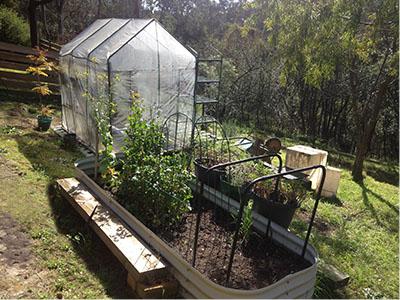 Harmony-Picton-Greenhouse