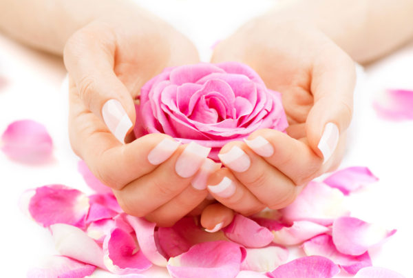 harmony rose petals in hands