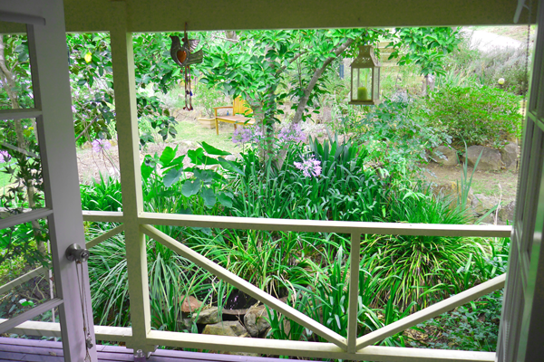 Garden View From Clinic